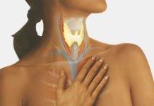 Гипертиреоз: Основные причины и симптомы. - щитовидная железа, щитовидка, гипертиреоз