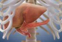 Основные правила лечения острого панкреатита - поджелудочная железа, панкреатит, лечение поджелудочной