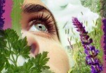 Почему дёргается глаз? - глазные болезни, глаз