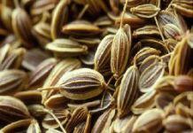 Семена Чиа: польза для здоровья. - фитотерапия, продукты