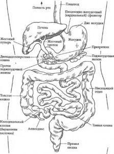 Ли Дюбель Раздельное питание Правильное сочетание продуктов  Диеты - продукты, питание, книги