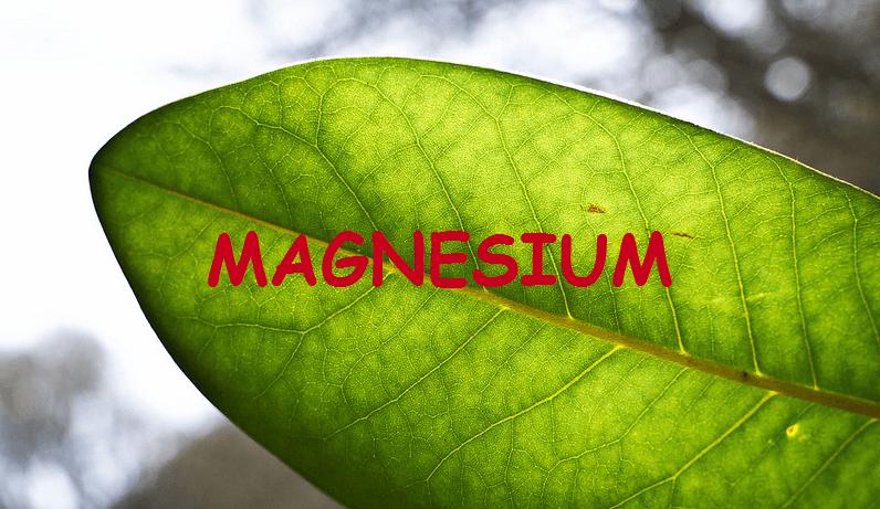 Дефицит магния в организме - симптомы