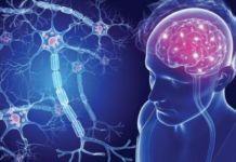 Ингибитор контрольной точки делает макрофаги аппетитными до Неходжкинской лимфомы. - новости, медновости